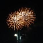紅梅を堪能!天神祭奉納花火の開催日時、穴場の観覧スポットはどこ?