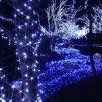 イルミネーションや夜景をスマートフォンでおしゃれに撮る方法