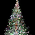 クリスマスツリーをおしゃれに見せるオーナメントLED電飾の飾り方