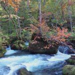 自然豊かな十和田湖と奥入瀬渓流で楽しむ2016年紅葉の秋