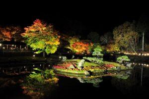 修善寺のライトアップされた紅葉