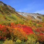 大雪山2016年紅葉の見頃とライトアップは?アクセス方と駐車場も