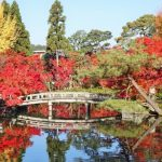 京都で人気の永観堂の紅葉は和歌に詠まれてる2016年見ごろ時期は?
