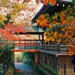『朗門の三長三本』である本土寺も2016年紅葉が美しい!