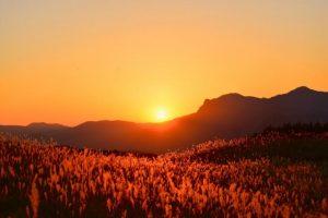 曽爾高原の紅葉