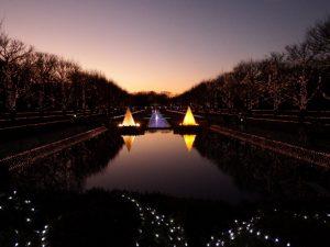 昭和記念公園WinterVistaIllumination