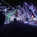 宝石色ライトアップよみうりランドジュエルイルミネーション2016