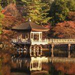 鹿で有名な奈良公園も紅葉スポット、2016の見ごろ時期は?